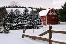 The Farmstead / by Kicks McGee