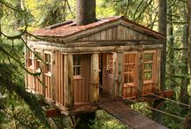 Cabanes - Treehouses / by Laurence Sourisseau