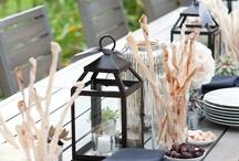 Wedding/reception ideas / by Shireen Steadman