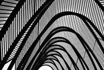 Calatrava / by Sandro