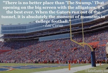 Florida Gators Fall Sports / Football, Soccer, Volleyball, Cross Country, Golf, and Swimming & Diving / by Gator Country