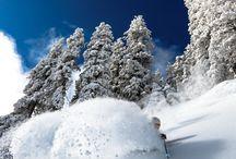Snow skiing / by Brandy Stallo