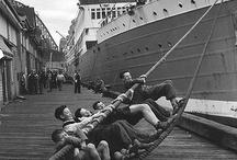 migrants arrivals in austalia / by Plony Lokker