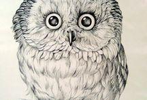 birds theme / by Veronika Kantorovitch