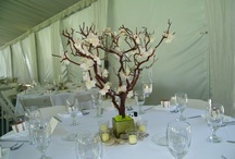 green/brown wedding / by Amber Woodall