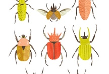 Insect Art / by Heather Rigney- Artist & Writer