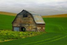 Barns / by Cheryl Silva Burrhus