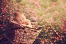 Newborn photos / by Vanesse Weaver