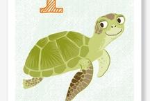 Turtle Turtle Turtle / by Heather McCarn