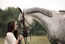 Horses, equal love. / My love of horses goes back to when I was 6 years old.  As I grew older we had 4 or more horses. My heart belonged to my first horse and was broken when my step father sold her before I came home from school one day. My heart never healed from that loss. / by Coni Disher