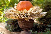 halloween ideas / by Jayme Maley