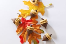 Falling into Autumn / Ideas to help celebrate and embrace this beautiful season - from the first leaf turning through Halloween and Thanksgiving, until Old Man Winter makes his entrance. / by Sharon Stinson