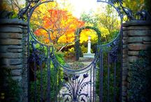 Beautiful Portals / Doors and Windows / by Laurie Harris