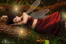 Fairies, Elves & Pixie Dust / by Kat