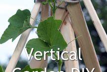 Gardening DIY and Tips / by JJ Virgin