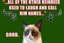 Hahahahahaha / by Kasey Murrell