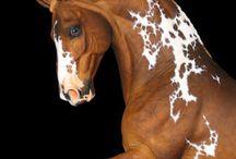 Horses / by Rasha Mansy