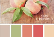 Colour Combos / by Lisette Gibbons