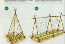 garden how to grow and raised beds / by Rhonda Stuart