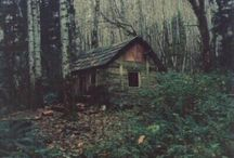 Cabin in the Woods / by Karen McClane