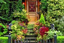 doorway / by Sherri Romero