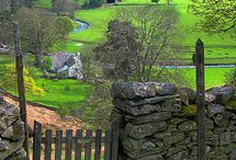 ENGLISH Country Lane / by Wendy Dykstra-Fishlock