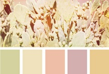 Color Palettes / by Kyla-Krista Ong