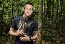 Sloths. And Ryan Gosling.  / Two of nature's finest creations. / by Buckyballs by Maxfield and Oberton Holdings LLC