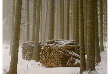 Winter Winter Winter / by Clean Spirited