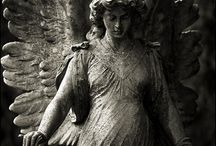 Angels / by Shannon Lee