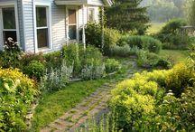 front garden / by Jennifer Nelson