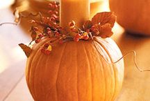 Fall Decorating Ideas / by Jimmy Morrow