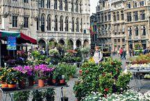 Belgium / by Mim Bullock