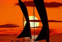 Boats / by Pam King