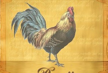 Rooster / by Christy Caughran