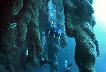 Diving at White Sands Dive Shop / by Las Terrazas Resort