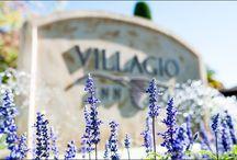 Vintage Estate ~ Yountville / #NVCE Weddings at Vintage Estate / by Napa Valley Custom Events ~ Sharon Burns