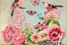 Digital Art / by Patricia Gasparino