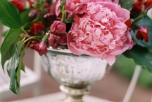 Centerpieces / None / by Karen Wise Photography