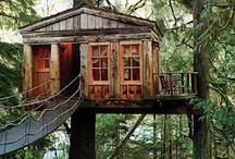Tree Houses / by Danielle Nakagawa