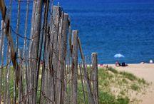Beach Life / by Kim Denicola