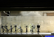 Bicycles / by Sin-Leng Cheah