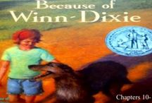 Because of Winn-Dixie (10-14) Vocabulary / Vocabulary that can be used with chapters 10-14 of Because of Winn-Dixie / by Amy Hawkins