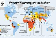 WWF Infografiken / by WWF Deutschland