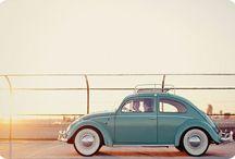 VW Bugs / by Tanya Steeves