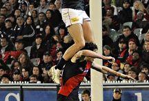 Afl (carlton) / by Sports Man