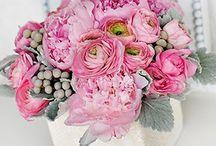 Wedding Ideas / by veronica