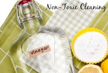 Cleaning recipes, tips & tricks / by Hind Nayel