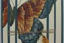 Butterfly cards / by Lisa Scholten