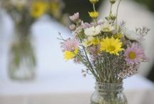 Weddings  / by Sarah Thurman